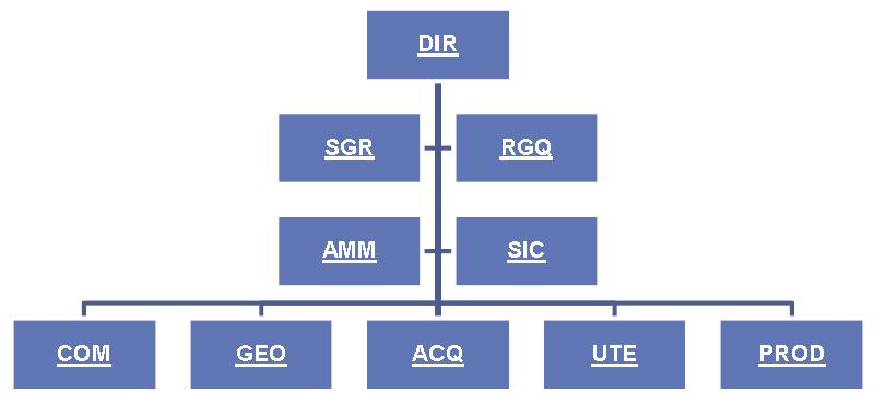 organizzazione tradizionale